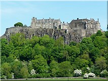 NS7894 : Stirling Castle by C L T Smith
