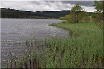 NY6491 : Along the shore of Bakethin reservoir by Nicholas Mutton