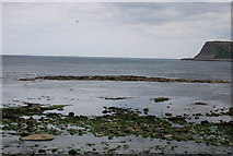 TA0390 : Mascus Rock, North Bay by N Chadwick