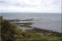 TA0390 : Scalby Ness Rocks by N Chadwick