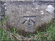 SD7992 : Benchmark on Railway Bridge by Moorcock Cottages by Roger Templeman