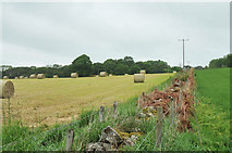NH8953 : Farmland near Park Farm by Steven Brown