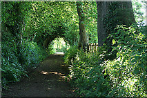 ST0107 : Cullompton:  Goblin Lane by Martin Bodman