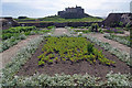 NU1341 : The walled garden, Lindisfarne Castle by Stephen McKay
