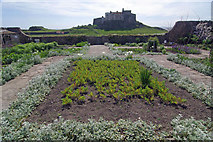 NU1341 : The walled garden, Lindisfarne Castle by Stephen McKay