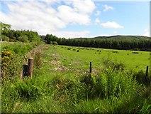 C2126 : Ballygay Townland by Kenneth  Allen