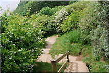 TA1281 : The Wolds Way descending into Horn Dale by N Chadwick