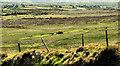 C7332 : Hill country near Castlerock (3) by Albert Bridge