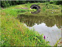 NS8579 : Canal Basin above the Falkirk Wheel by Dr Richard Murray