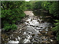 SD6389 : River Rawthey from Middleton Bridge by Trevor Littlewood