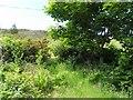 C2346 : Arryheernabin Townland by Kenneth  Allen