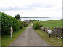 NU1535 : Track from Budle to Kiln Point by Andrew Curtis