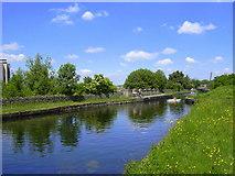 SD8432 : Leeds-Liverpool Canal, Burnley by robert wade