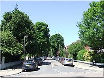TQ1572 : Walpole Gardens, Twickenham by Malc McDonald