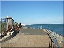 SZ6497 : Promenade at Southsea Castle by David Smith