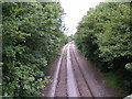 TM3973 : Railway Lines to Halesworth by Adrian Cable