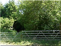 SS4939 : A footpath which leads from Nethercott Road to Knowle by Roger A Smith