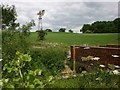 SP2644 : Derelict windmill and bridge over Wagtail Brook by David P Howard