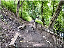 SJ9090 : Riverside Path by Gerald England