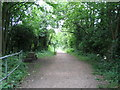 SP2973 : The Kenilworth Greenway by E Gammie