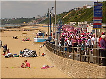 SZ1191 : Boscombe: the Race for Life by Chris Downer