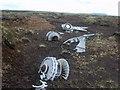 NY7229 : Aircrash Wreckage, Knock Fell by Michael Graham