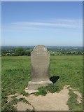 N9159 : 1798 memorial on Hill of Tara by John M
