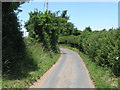 SO8265 : Rural lane, deepest Worcestershire by Peter Whatley