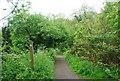 TQ3170 : Capital Ring through Biggin Wood by N Chadwick