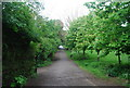 TQ3170 : Capital Ring, The Rookery, Streatham Common by N Chadwick