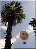 SZ0891 : Bournemouth: a palm and a balloon by Chris Downer