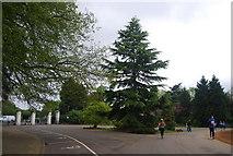 TQ3473 : Carriage Drive, Dulwich Park by N Chadwick