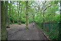 TQ3473 : Cox's Walk by N Chadwick
