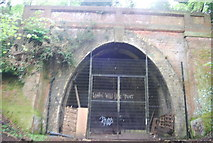 TQ3472 : Crescent Wood Tunnel Entrance, Sydenham Hill Wood by N Chadwick