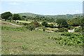 SX6970 : Holne: lane to West Stoke by Martin Bodman