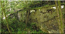 NS4276 : Remains of a turbine house by Lairich Rig