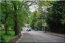 TQ3472 : Wells Park Rd by N Chadwick