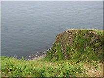 D2438 : Cliff edge, Loughan bay by Willie Duffin