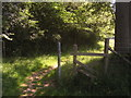 TQ4844 : Unused stile near Wilkins Gill Wood by David Anstiss