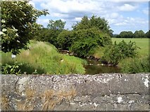 O0163 : River Hurley, Co Meath by C O'Flanagan