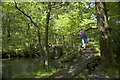 SD2296 : Footbridge over Tarn Beck, Seathwaite by Tom Richardson