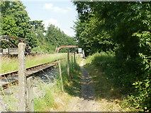 SO6302 : Access path to St Mary's Halt, Lydney by Jaggery