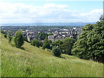 NT2674 : Northern slope of the Calton Hill by kim traynor