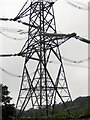 SY3698 : Electricity Pylon - Fishpond Bottom by Sarah Smith