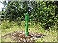 N9660 : Water pump, Co Meath by C O'Flanagan