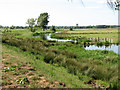 TM4591 : Meandering drainage ditch north of the River Waveney by Evelyn Simak