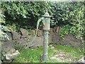 N9362 : Water pump, Co Meath by C O'Flanagan