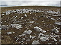 NN6677 : Quartz litter on the moor by Cary O'Donnell