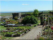 NX4355 : Nursery garden within town wall by RH Dengate