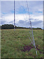 NG3342 : High tech wind vane (1) by Richard Dorrell